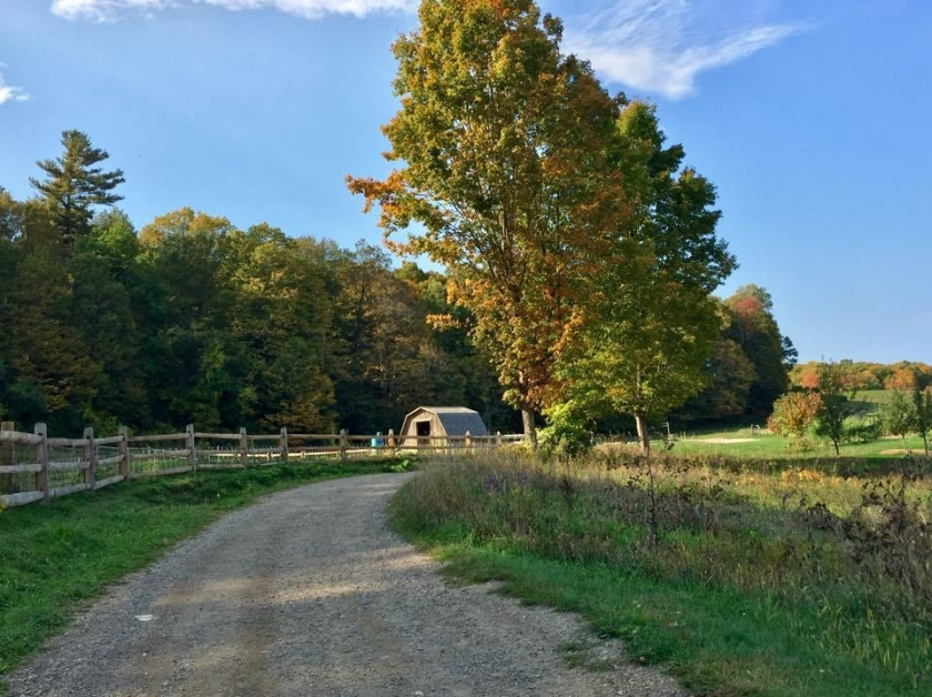 shelburne-farms.jpg